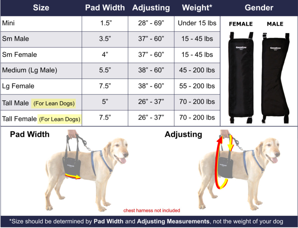 GingerLead_Sizing_Chart_w_Images