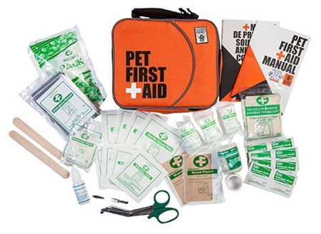 First Aid For Dog Kit: the Essential!