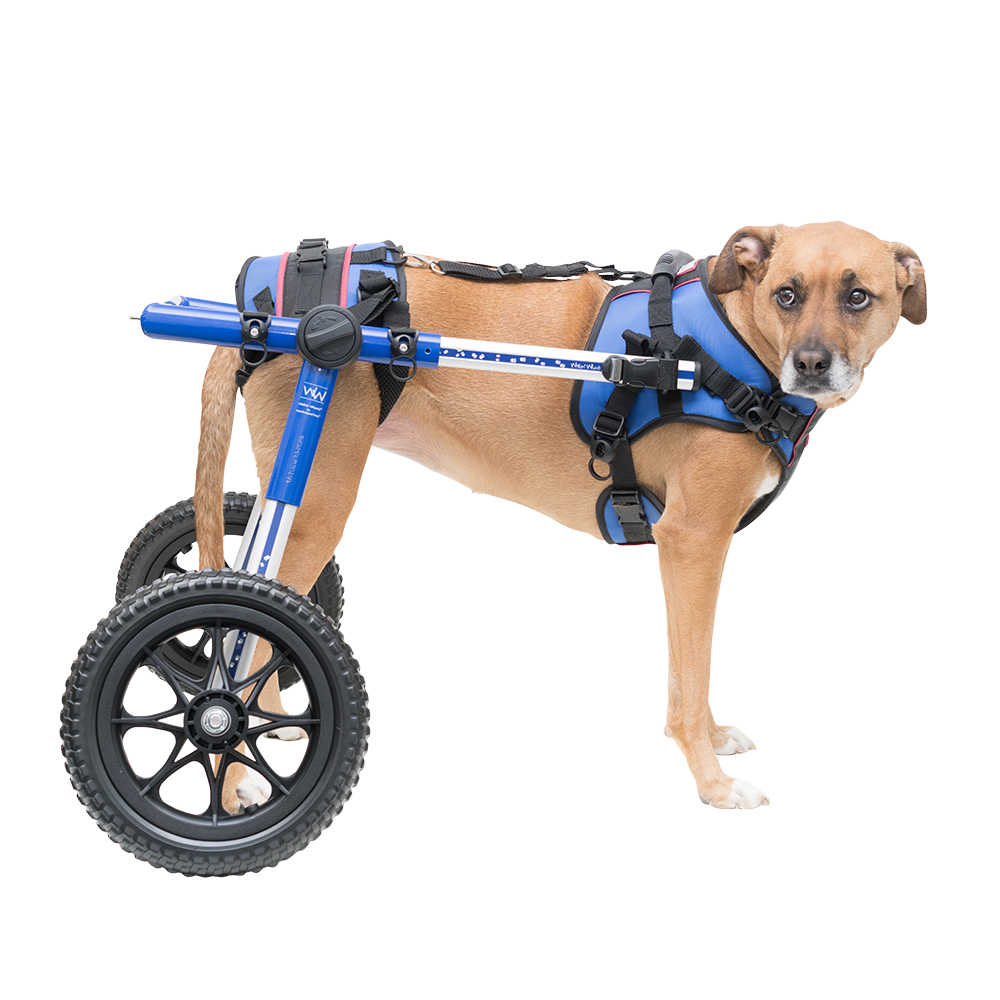 how to build a ma0stidf wheelchair canada