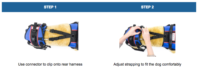 Harness Instructions