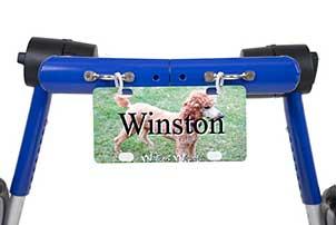 winston1